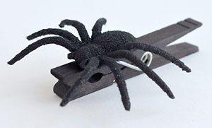 spiderClip